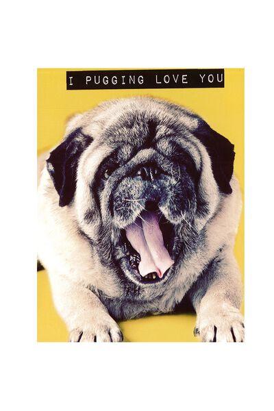 Pug Card, PUG LOVE