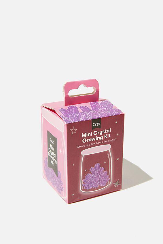 Mini Crystal Growing Kit, PURPLE