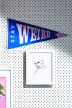 Pennant Wall Flag, STAY WEIRD