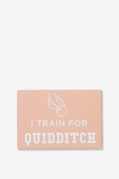Quirky Magnets, LCN QUIDDITCH