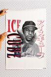 LCN MT ICE CUBE