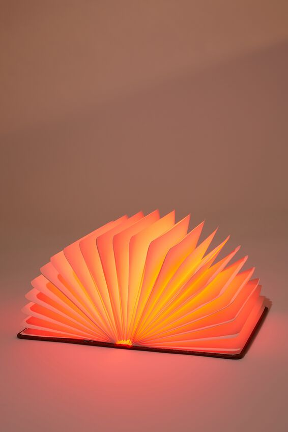 Shaped Novelty Light, LAZY GUIDE BOOK