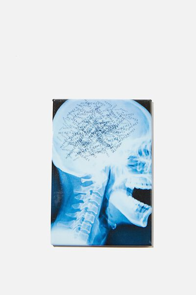Quirky Magnets, SKULL XRAY