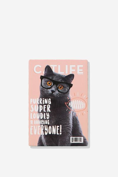 Quirky Magnets, CAT LIFE