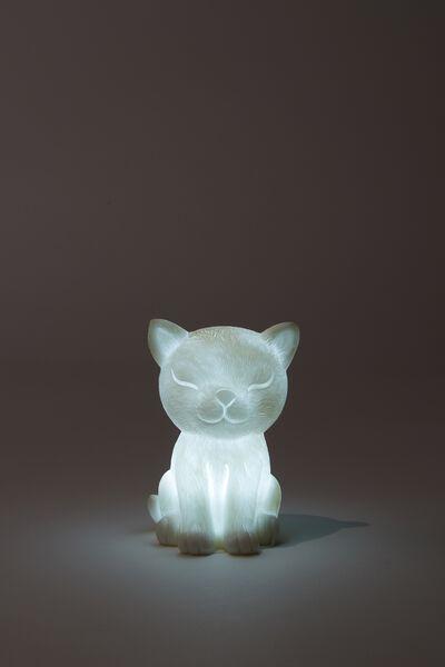 Tiny Novelty Light, CAT
