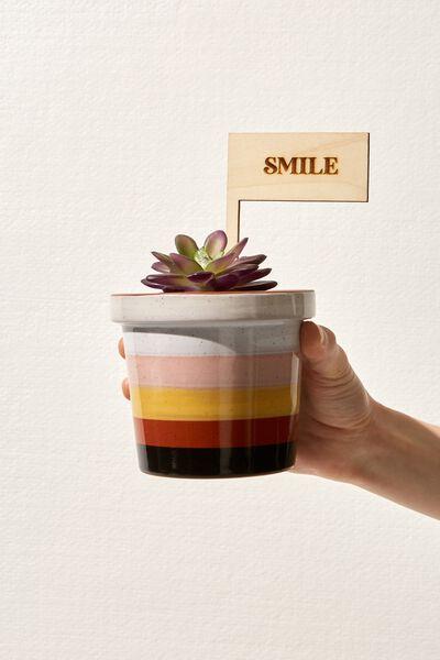 Message Pot Planter, STRIPE