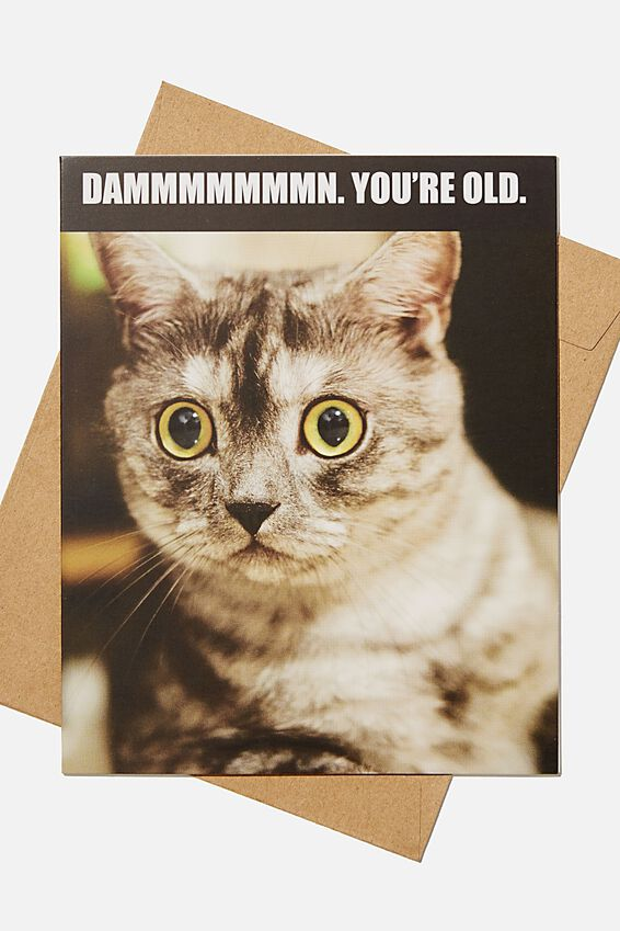 Funny Birthday Card, DAMN YOURE OLD CAT MEME
