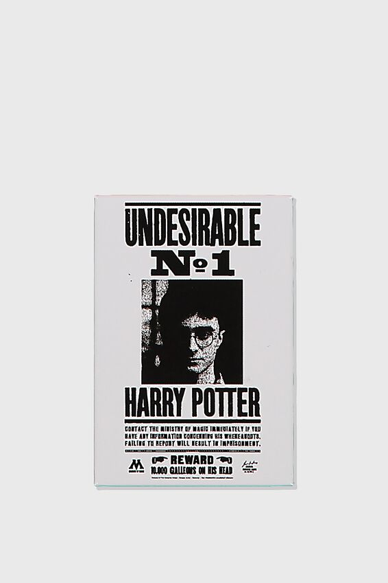 Harry Potter Quirky Magnet, LCN WB HP UNDESIRABLE
