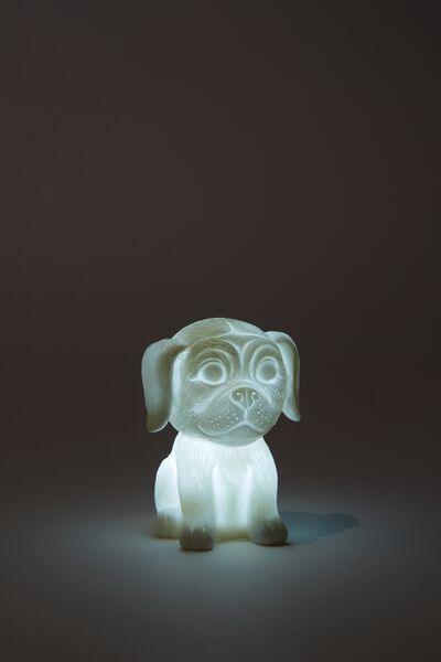 Tiny Novelty Light, PUG