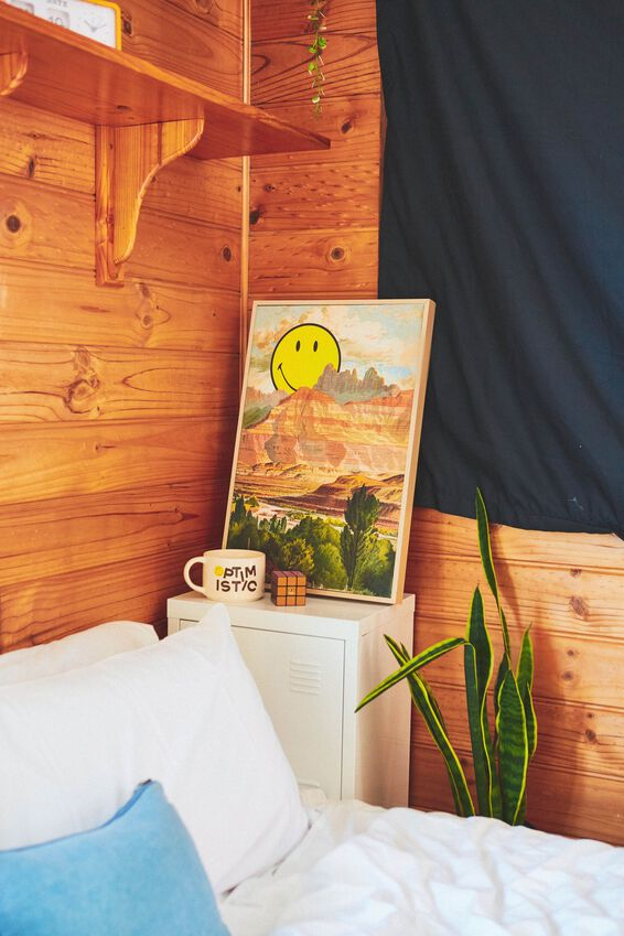 40 X 60 Smiley Canvas Art, LCN SMI SMILEY MOUNTAINS
