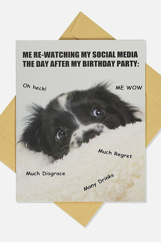 Nice Birthday Card, DOG AFTER BIRTHDAY MEME