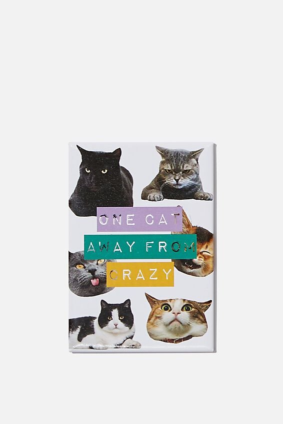 Quirky Magnets, CRAZY CAT