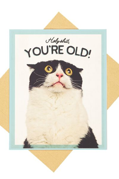 Funny Birthday Card, HOLY SHIT, YOU'RE OLD CAT!